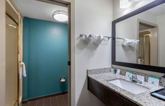 Pokój Clarion Inn and Suites DFW North