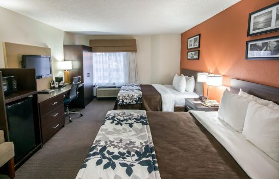 Zimmer Sleep Inn DFW North