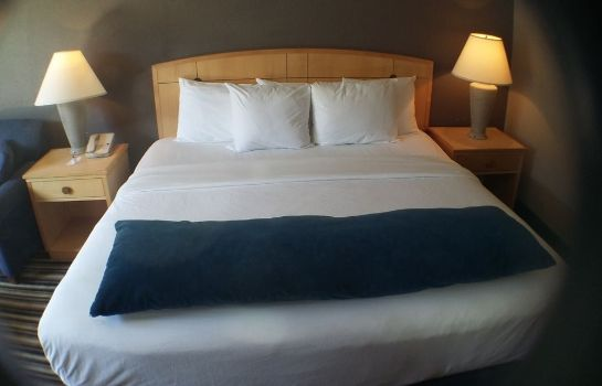 Standardzimmer Magnuson Grand Memphis Airport - Graceland