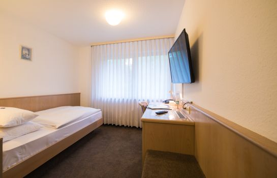 Single room (standard) Hotel am Wasen