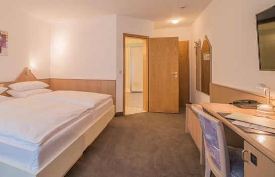 Double room (standard) Hotel am Wasen