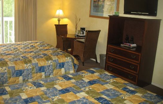 Single room (superior) Creekside Inn
