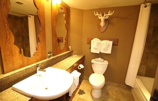 Cuarto de baño Banff Caribou Lodge and Spa