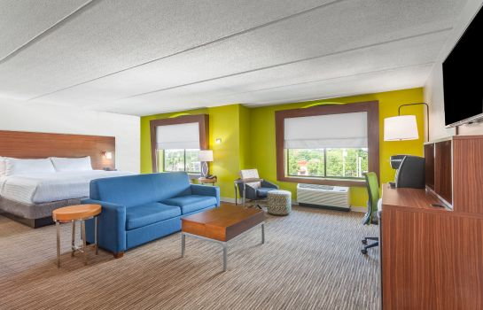 Suite Holiday Inn Express & Suites AUGUSTA WEST - FT GORDON AREA