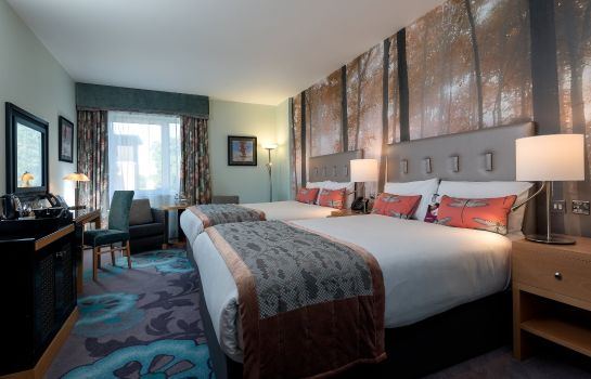 Room Crowne Plaza DUBLIN AIRPORT