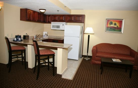 Suite Holiday Inn Express & Suites DETROIT DOWNTOWN