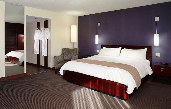 Chambre HOTEL RUBY FOOS MONTREAL