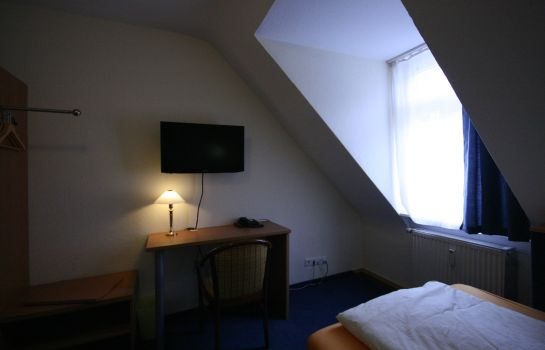 Single room (standard) Altstadt Hotel