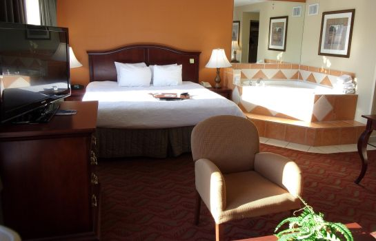 Suite Hampton Inn - Suites Bolingbrook