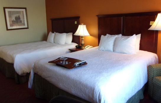 Room Hampton Inn - Suites Bolingbrook