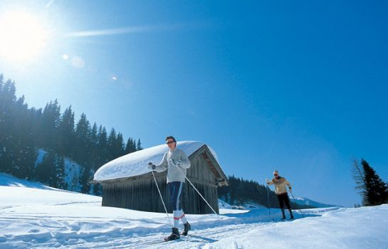 Info Asi-Lodge Tirol