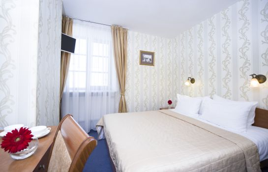 Double room (standard) Moyka 5
