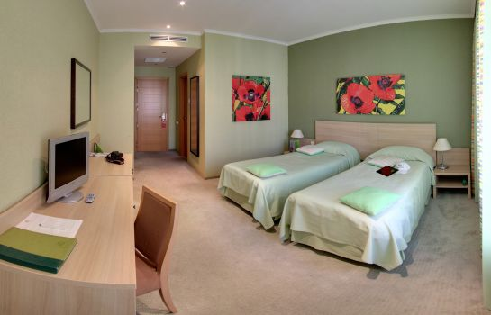 Double room (standard) NashOTEL