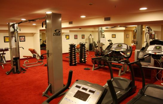 Sports facilities Theoxenia Hotel Piraeus