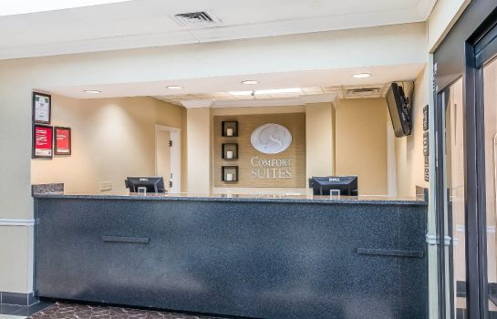 Hol hotelowy Comfort Suites Savannah North