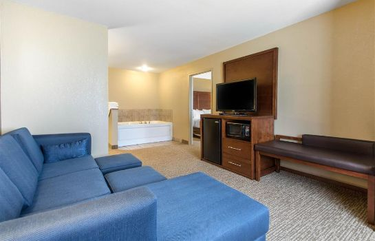 Suite Comfort Suites Johnson Creek Conference