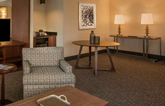 Suite DoubleTree by Hilton Chicago - Schaumburg