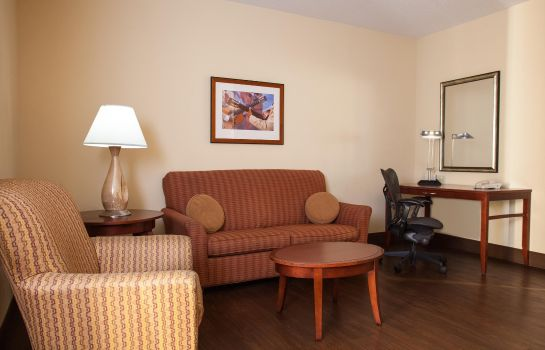Suite Hilton Garden Inn El Paso - University