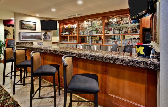Hotel-Bar Holiday Inn & Suites ANN ARBOR UNIV. MICHIGAN AREA