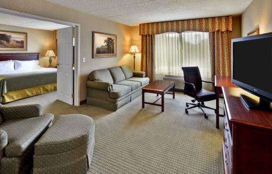 Suite Holiday Inn & Suites ANN ARBOR UNIV. MICHIGAN AREA
