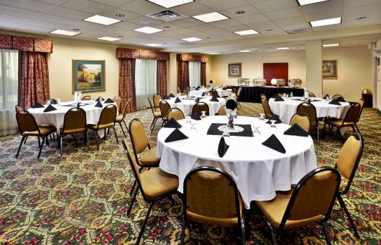 Sala konferencyjna Holiday Inn & Suites ANN ARBOR UNIV. MICHIGAN AREA