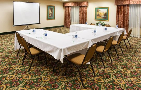 Sala congressi Holiday Inn & Suites ANN ARBOR UNIV. MICHIGAN AREA