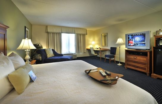 Habitación Hampton Inn - Suites ATL-Six Flags