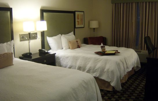 Zimmer Hampton Inn - Suites Houston-Bush Intercontinental Aprt