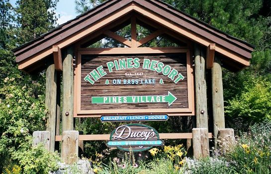 Information The Pines Resort