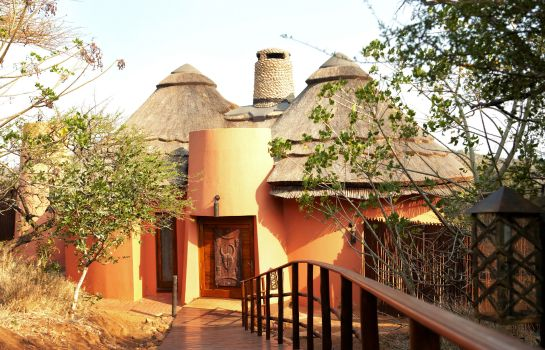 Suite Thanda Safari