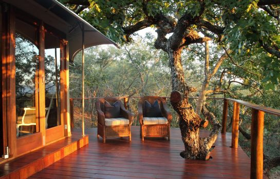 Room Thanda Safari