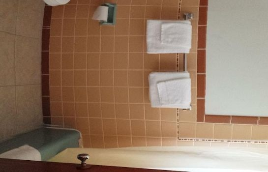 Bagno in camera Budget Host Midway Inn