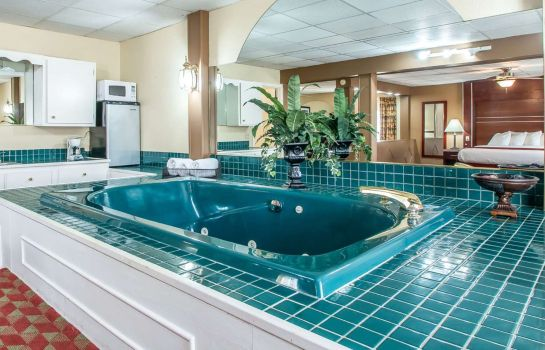 Suite Quality Inn East Dubuque