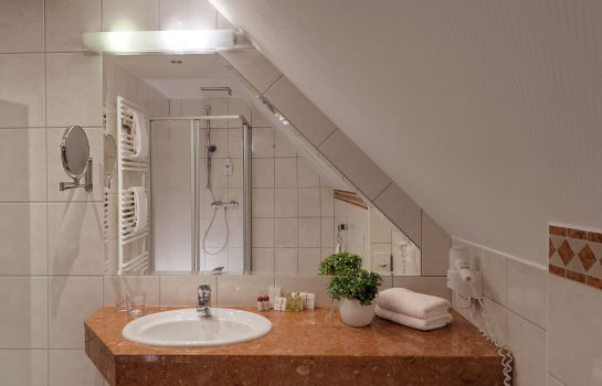Badezimmer Der Romantikhof (Adults only)