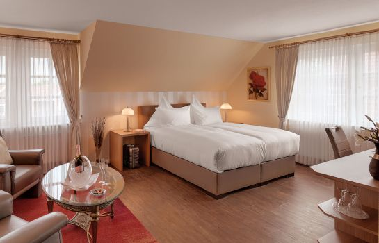 Suite Junior Der Romantikhof (Adults only)