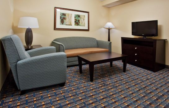 Suite Holiday Inn Express ALPHARETTA - ROSWELL