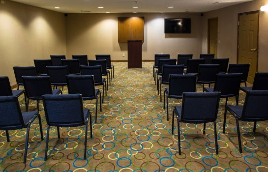 Conference room Holiday Inn Express ALPHARETTA - ROSWELL