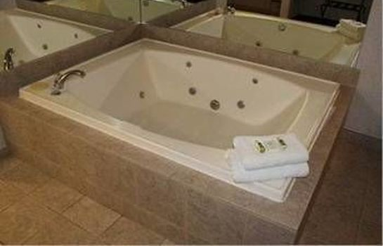 Jaccuzi Crown Choice Inn & Suites Lakeview & Waterpark