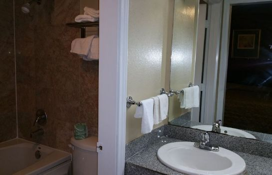 Bagno in camera Executive Inn and Suites Waxahachie