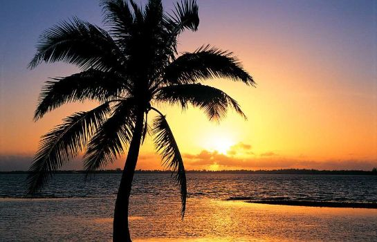 info DoubleTree Resort by Hilton Grand Key - Key West