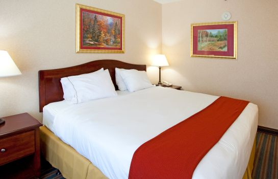 Chambre Holiday Inn Express BRASELTON