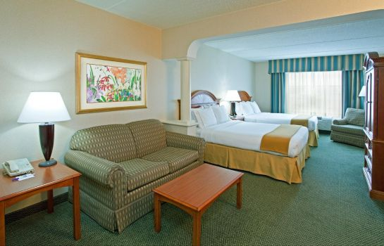 Suite Holiday Inn Express & Suites PITTSBURGH-SOUTH SIDE