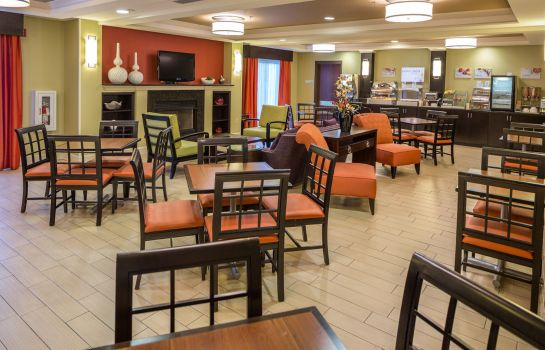 Restaurant Holiday Inn Express & Suites I-26 & US 29 AT WESTGATE MALL