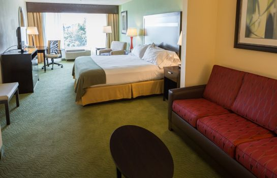 Suite Holiday Inn Express & Suites I-26 & US 29 AT WESTGATE MALL