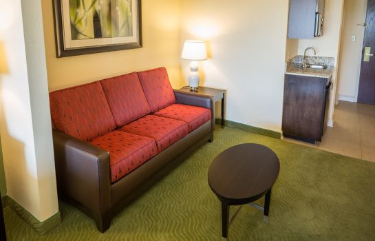 Zimmer Holiday Inn Express & Suites I-26 & US 29 AT WESTGATE MALL