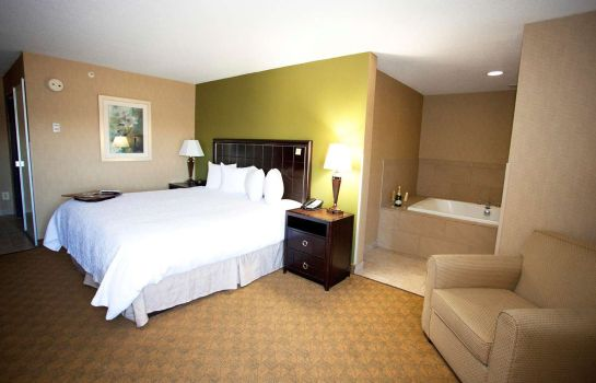Habitación Hampton Inn Port Huron