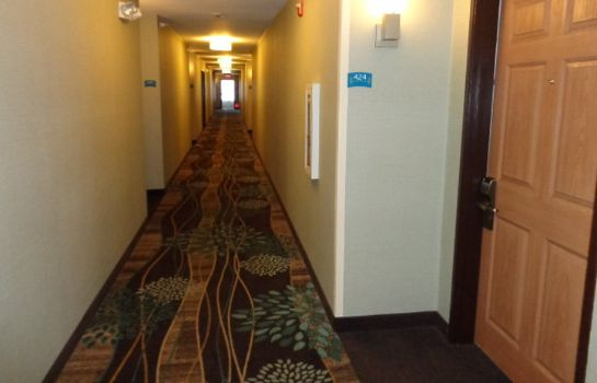 Hotelhalle Staybridge Suites COLORADO SPRINGS NORTH