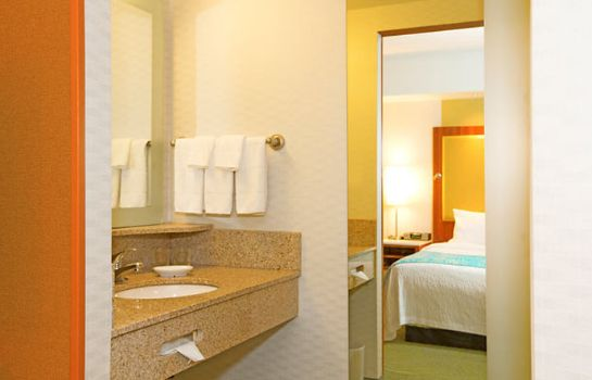 Pokój SpringHill Suites Pittsburgh North Shore