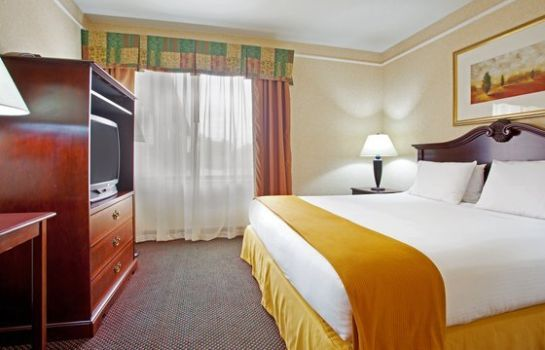 Suite Holiday Inn Express & Suites GRAND RAPIDS AIRPORT