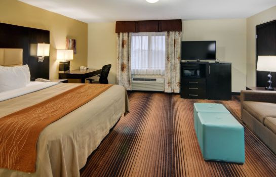 Suite Comfort Inn Grapevine